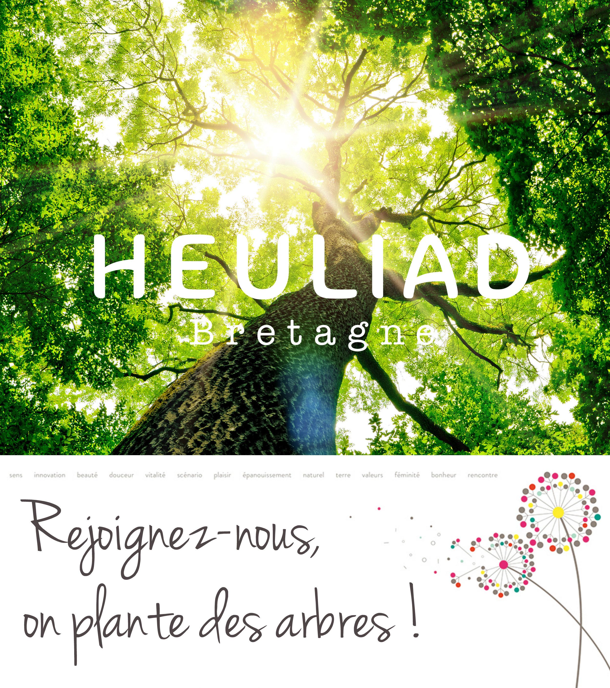 La forêt heuliad - reforestaction - crédit Fotolia