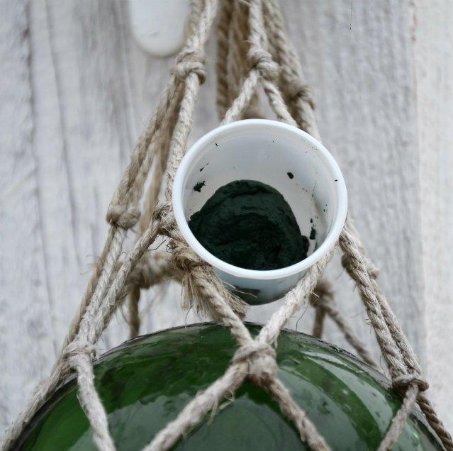 spiruline marine spirubreizh - heuliad