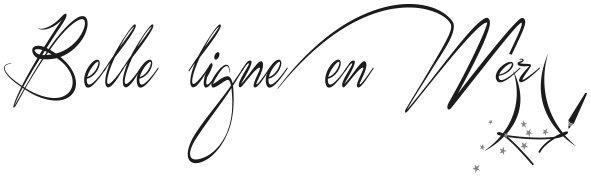 logo belle ligne en mer1